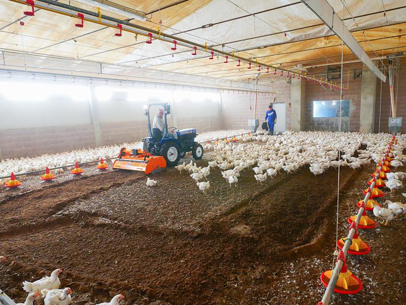 fräs-för-blandning-av-fjäderfäunderlag-pavo-160